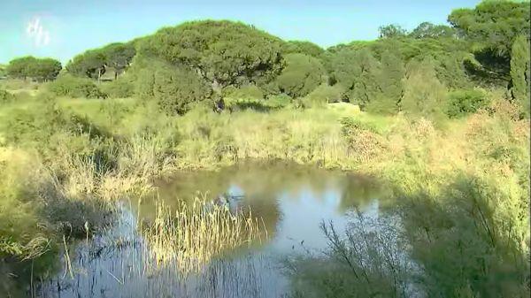Jardín Botánico Dunas del Odiel Palos de la Frontera Disfruta Huelva vídeo