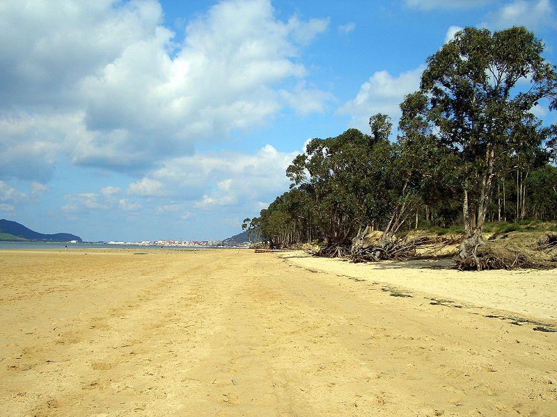 laredo playa del regaton
